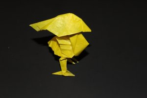 WOSK_112 - YELLOW BIRD (1)