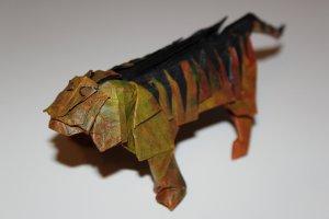 KOMATSU - TIGER (1)