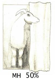 goat MH1