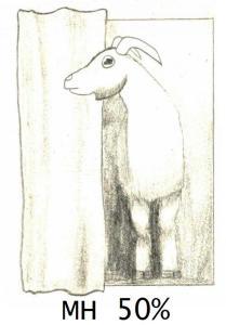 goat MH2