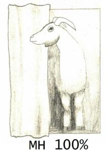 goat MH3
