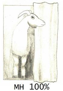 goat MH4