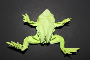 WOSK_210 - TREE FROG (3)