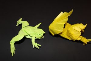 WOSK_210 - TREE FROG (8)