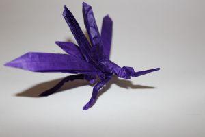 otmcp_026-mosquito-tsuda-4
