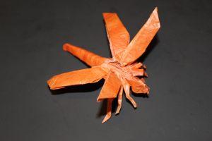 otmcp_028_03-dragonfly-1-1b-kamiya-101