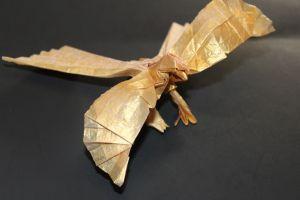 OTMCP_029 - LESSER BIRD OF PARADISE - KATSUTA (1)
