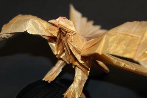 OTMCP_029 - LESSER BIRD OF PARADISE - KATSUTA (5)