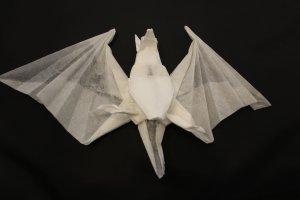 OTMCP_036 - BAT - MIYAJIMA (1)