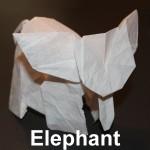 WKO_008 - ELEPHANT (102)