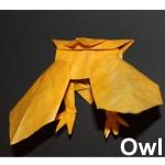 WKO_013 - OWL (5)