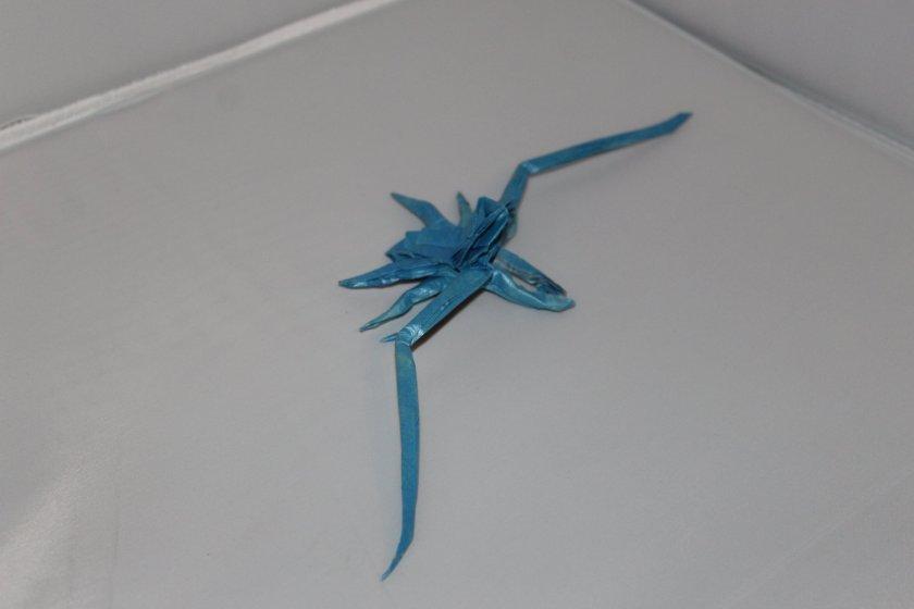 OTMCP_042 - WHIP SPIDER - KATSUTA (110)