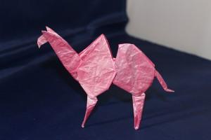 OTMCP_052 - 15 BASED CAMEL - NISHIKAWA (107)