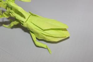 otmcp_057 - praying mantis - kamiya (103)