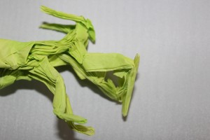 otmcp_057 - praying mantis - kamiya (109)