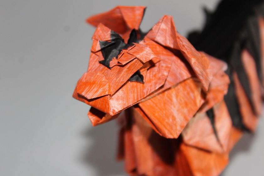 wko_039 - tiger (112)