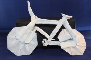 OTMCP_064 - BICYCLE V1-8 - KU (102)