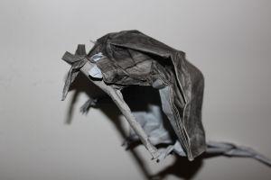 WKO_018 - DEATH OF RATS (104)