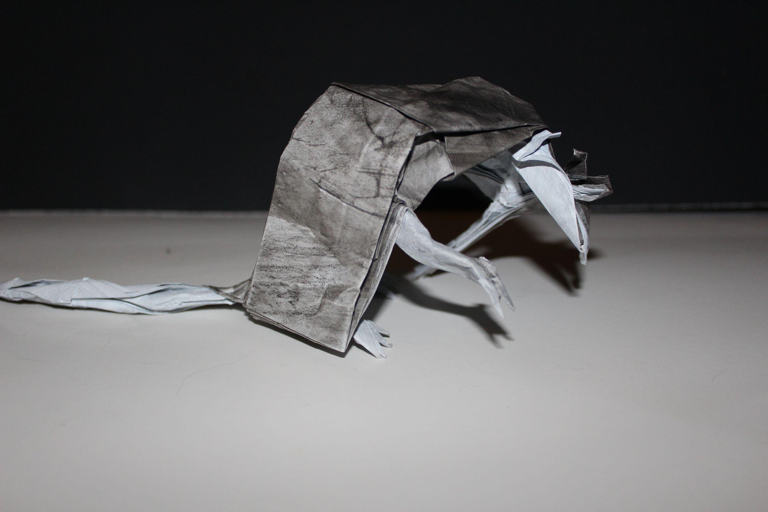 WKO_018 - DEATH OF RATS (109)
