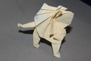 WKO_030 - LION (103)