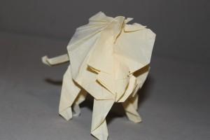 WKO_030 - LION (106)