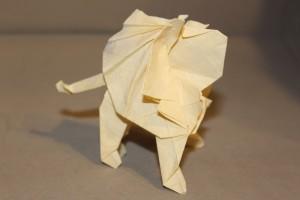 WKO_030 - LION (107)