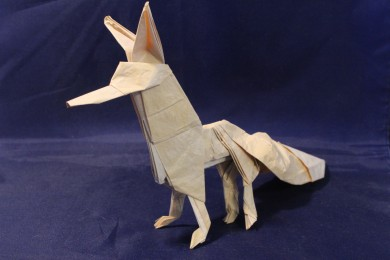 WKO_053 - THE FOX (101)