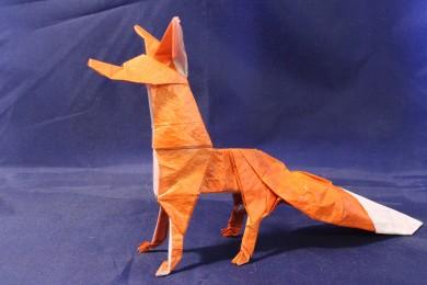 WKO_053 - THE FOX (103)