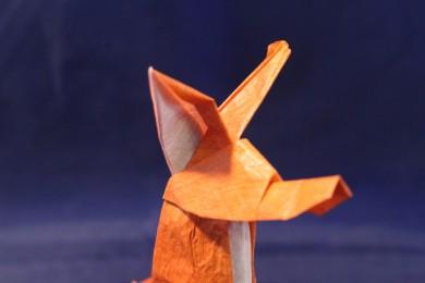 WKO_053 - THE FOX (106)