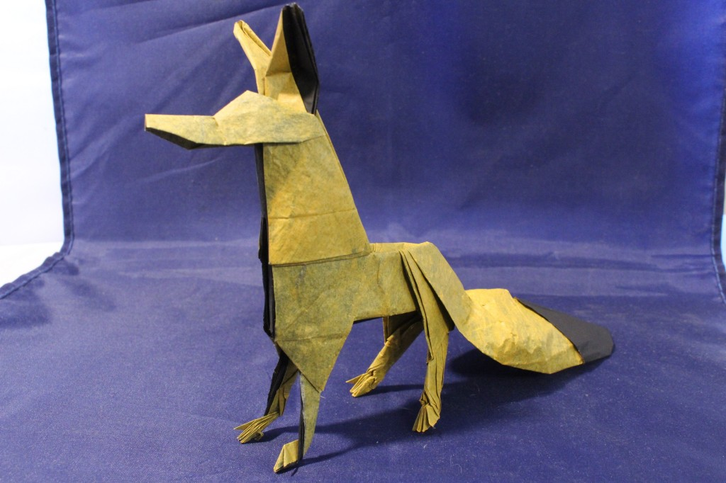 WKO_053 - THE FOX (107)